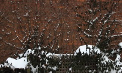 The Wall in Snow