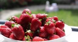 Strawberries fb